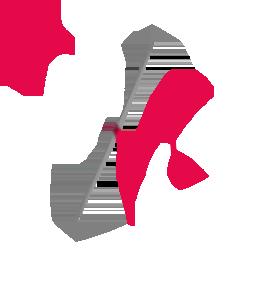 Wimediacom